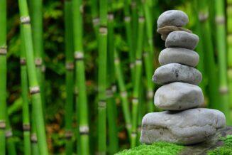 Łatwe sposoby na przebudowę zarośniętego ogrodu