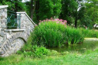 Feng Shui w ogrodzie. Jak urządzić ogród według zasad Feng Shui